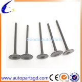 ENGINE INLET AND EXHAUST VALVE SET  fit BMW